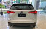 Lexus NX300 mẫu xe chuyên dụng thể thao cao cấp trong phố