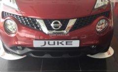 Bán Nissan Juke sản xuất 2016, màu đỏ, xe nhập giá 1 tỷ 60 tr tại Hà Nội