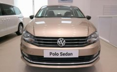 Cần bán Volkswagen Polo E đời 2018, màu bạc, xe nhập, giá 699tr giá 699 triệu tại Tp.HCM