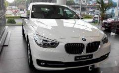 Bán ô tô BMW 520 GT sản xuất 2018, nhập khẩu nguyên chiếc, giá chỉ 700 triệu giá 700 triệu tại Tp.HCM