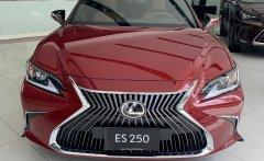 Bán Lexus ES250 Sedan hạng sang 2020 giá 2 tỷ 499 tr tại Tp.HCM