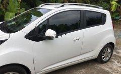 Cần bán Chevrolet Spark đời 2017, nhập khẩu giá 300 triệu tại Tiền Giang